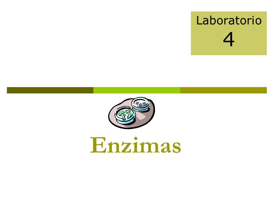 Laboratorio 4 Enzimas