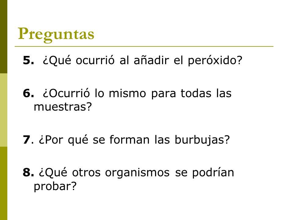 Preguntas 5. ¿Qué ocurrió al añadir el peróxido