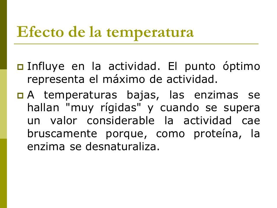Efecto de la temperatura