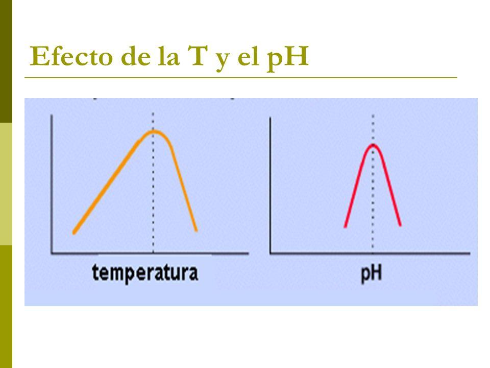 Efecto de la T y el pH