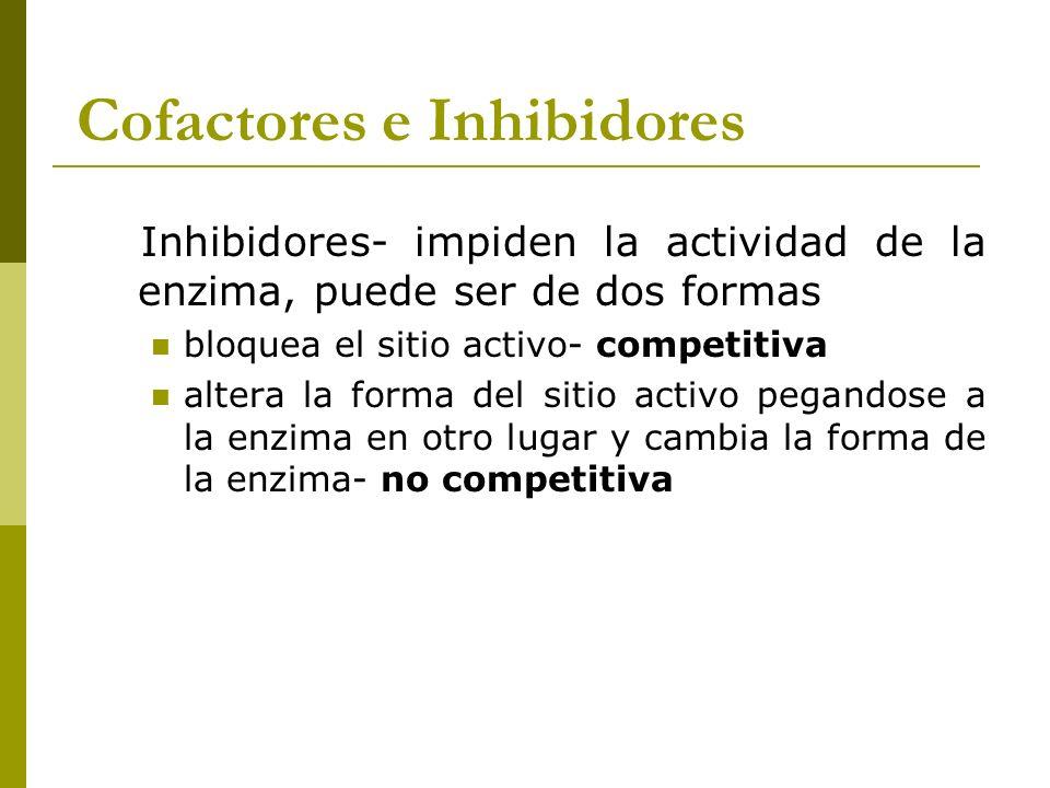 Cofactores e Inhibidores