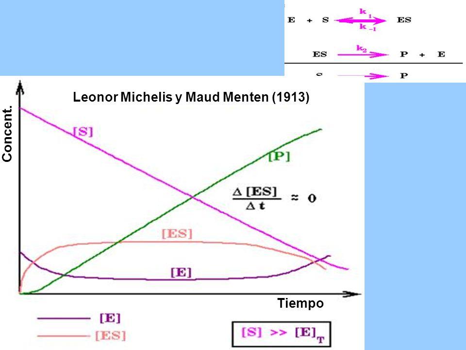 Leonor Michelis y Maud Menten (1913)
