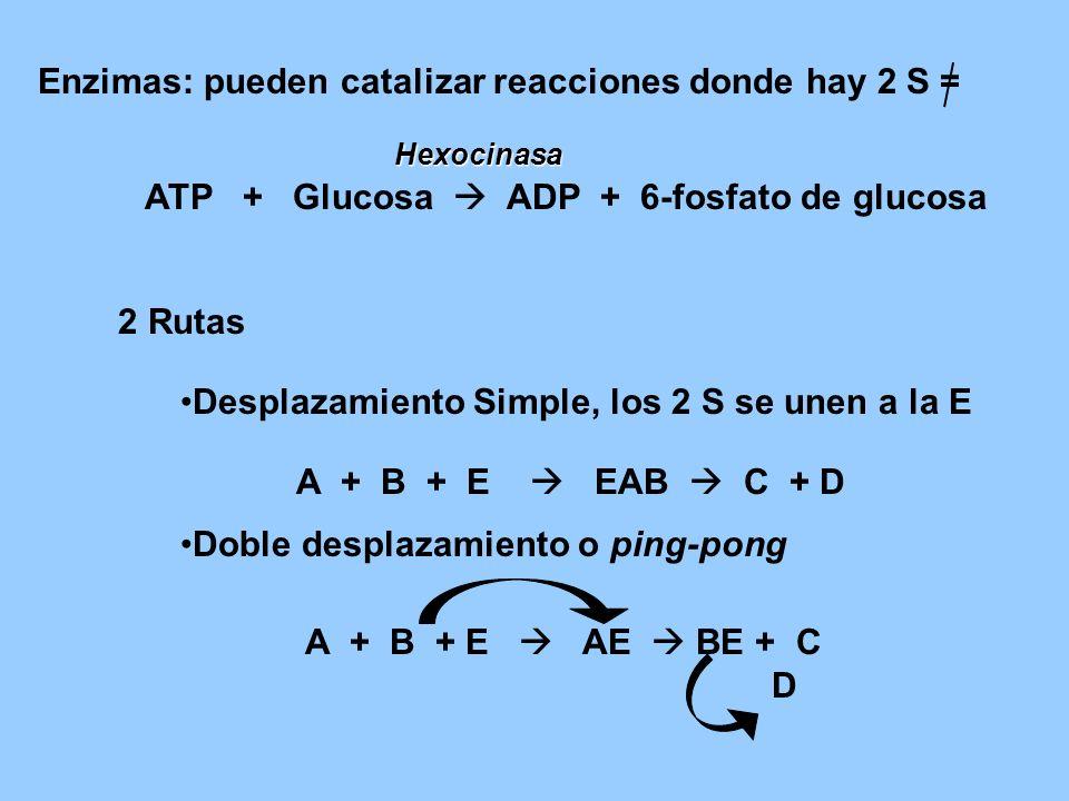 Enzimas: pueden catalizar reacciones donde hay 2 S =