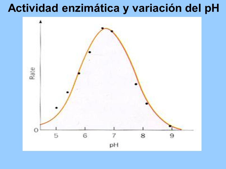 Actividad enzimática y variación del pH