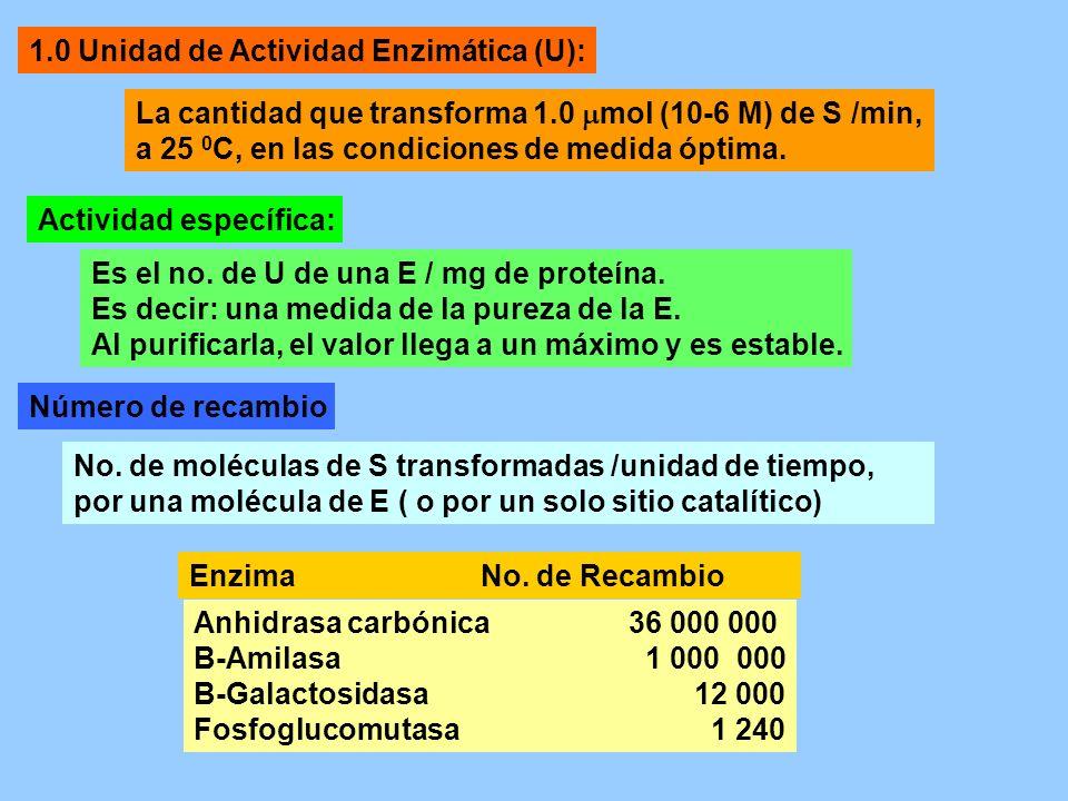 1.0 Unidad de Actividad Enzimática (U):