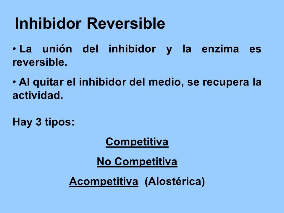 Acompetitiva (Alostérica)