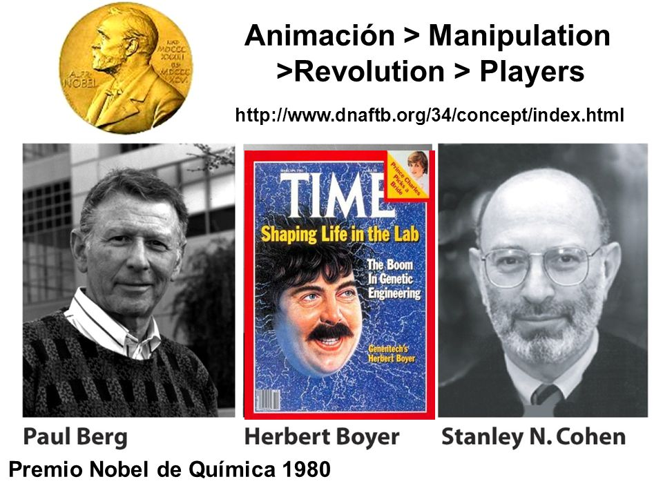 Animación > Manipulation >Revolution > Players