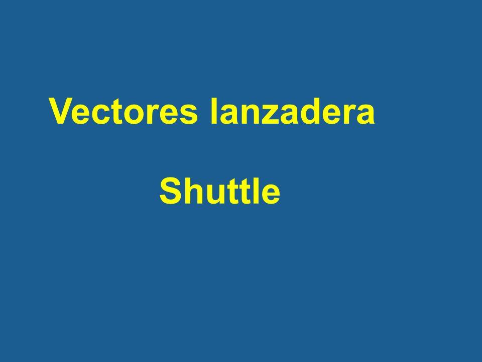 Vectores lanzadera Shuttle