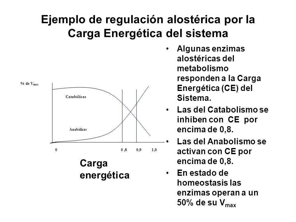 Ejemplo de regulación alostérica por la Carga Energética del sistema