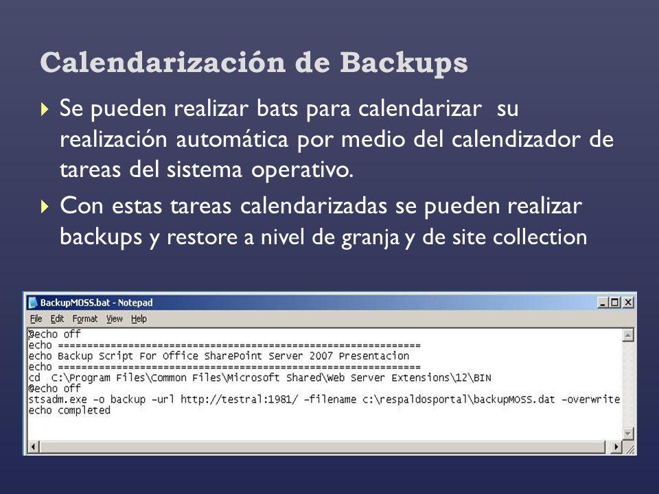 Calendarización de Backups