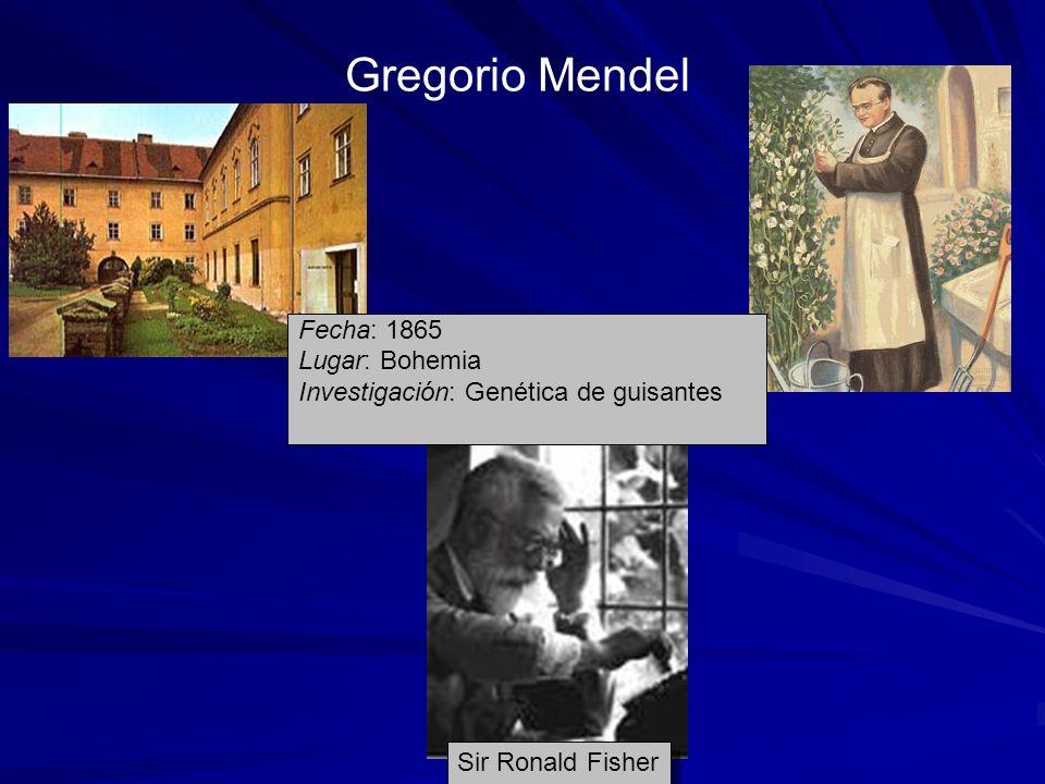 Fecha: 1865 Lugar: Bohemia Investigación: Genética de guisantes