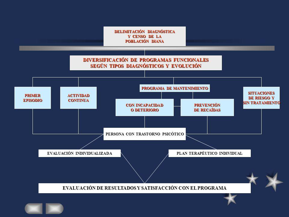 DIVERSIFICACIÓN DE PROGRAMAS FUNCIONALES
