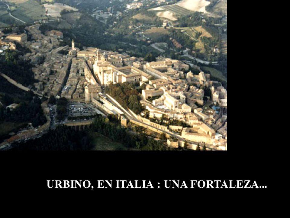 URBINO, EN ITALIA : UNA FORTALEZA...
