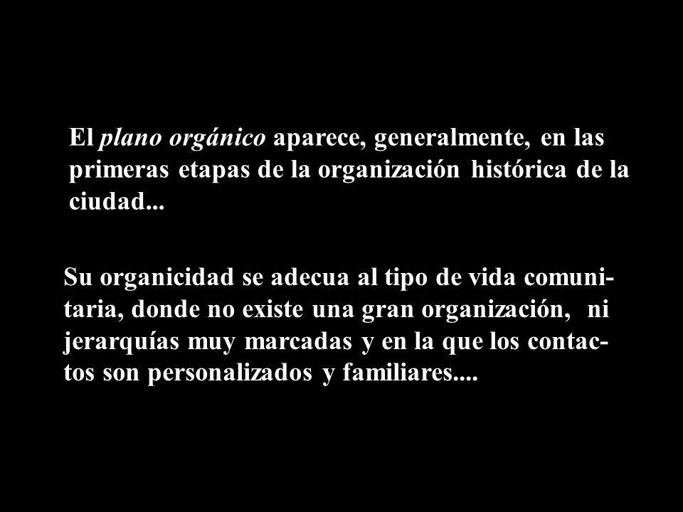 El plano orgánico aparece, generalmente, en las primeras etapas de la organización histórica de la ciudad...