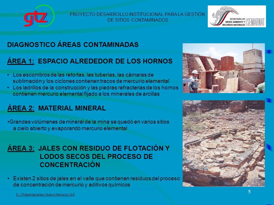 DIAGNOSTICO ÁREAS CONTAMINADAS ÁREA 1: ESPACIO ALREDEDOR DE LOS HORNOS
