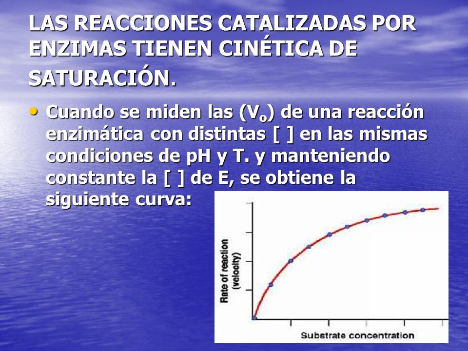 LAS REACCIONES CATALIZADAS POR ENZIMAS TIENEN CINÉTICA DE SATURACIÓN.