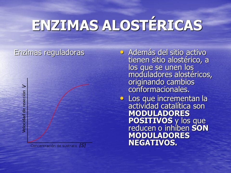 ENZIMAS ALOSTÉRICAS Enzimas reguladoras