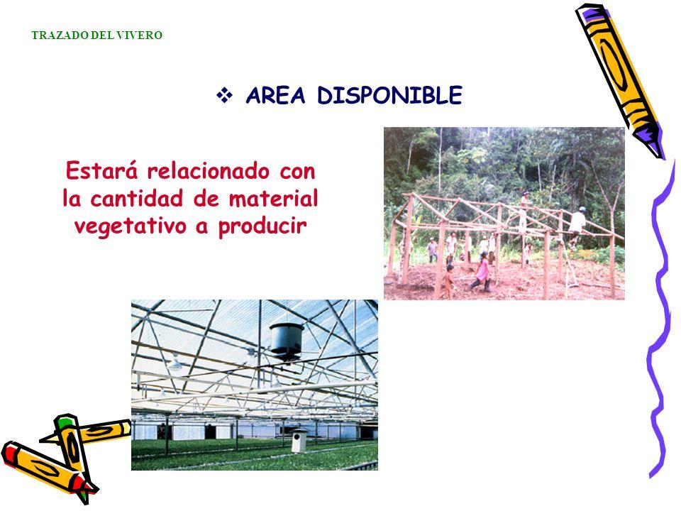 Estará relacionado con la cantidad de material vegetativo a producir