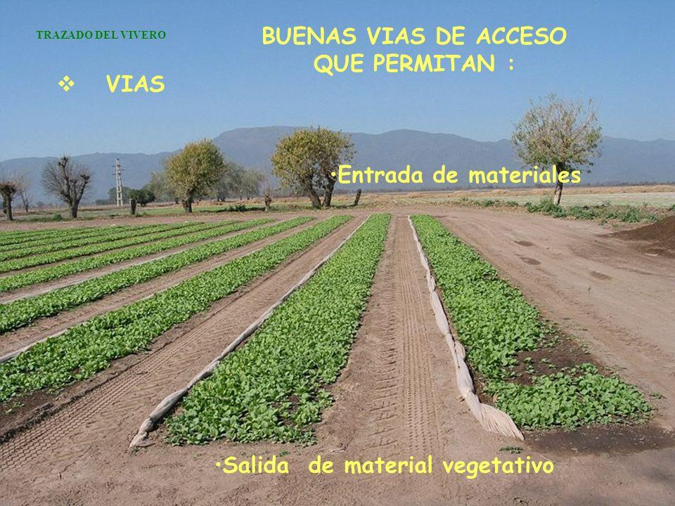 BUENAS VIAS DE ACCESO QUE PERMITAN : Salida de material vegetativo