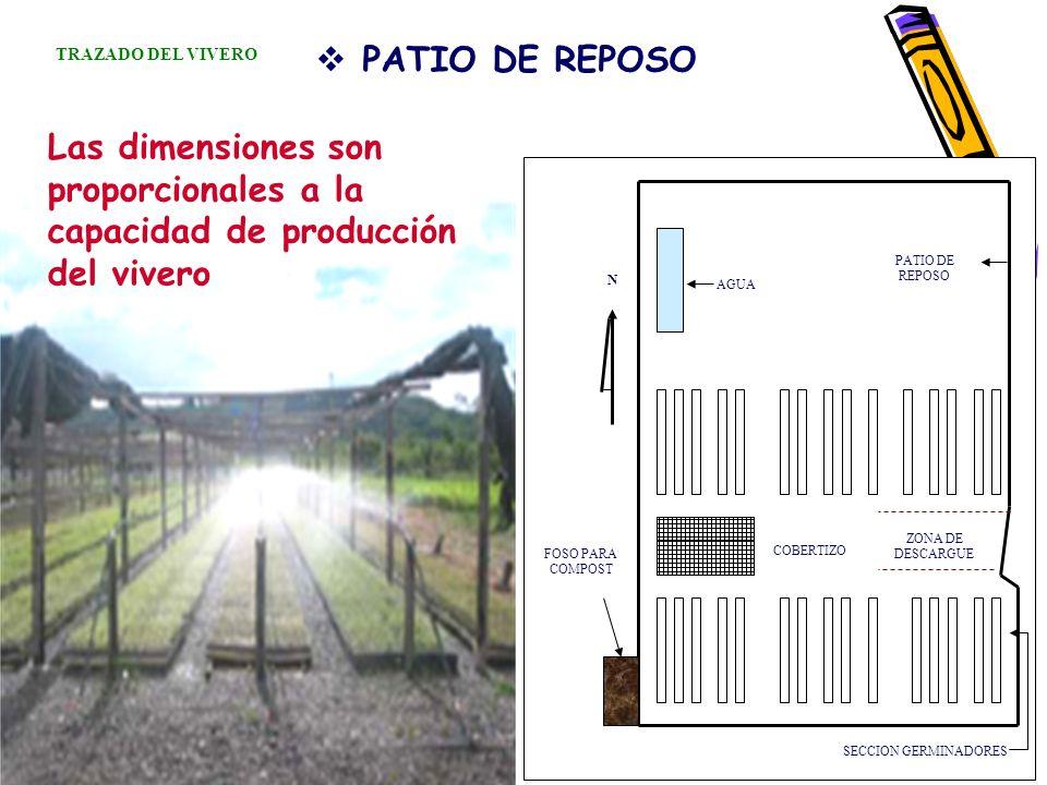 TRAZADO DEL VIVERO PATIO DE REPOSO. Las dimensiones son proporcionales a la capacidad de producción del vivero.