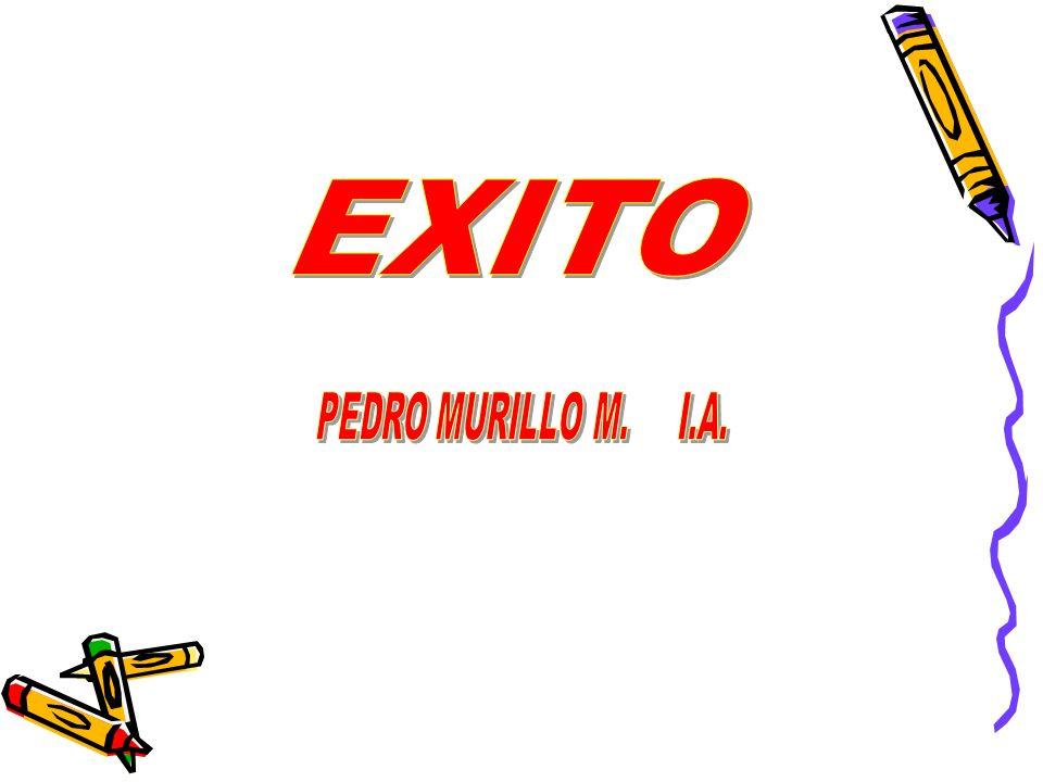 EXITO PEDRO MURILLO M. I.A.