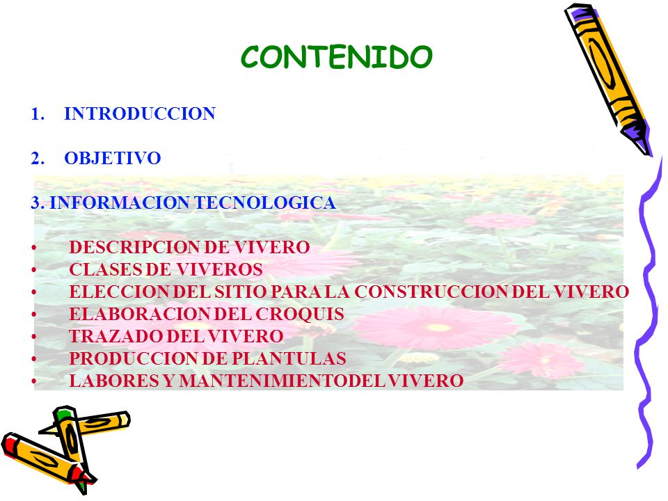 CONTENIDO INTRODUCCION OBJETIVO 3. INFORMACION TECNOLOGICA
