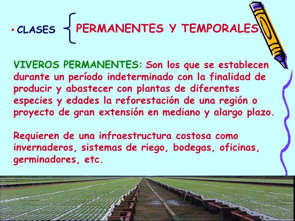 PERMANENTES Y TEMPORALES.