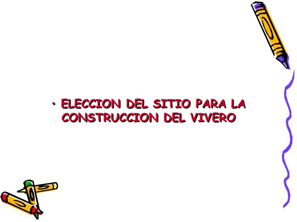 ELECCION DEL SITIO PARA LA CONSTRUCCION DEL VIVERO