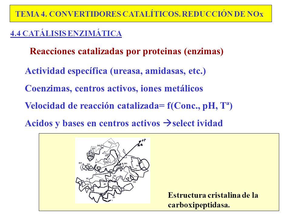 Reacciones catalizadas por proteinas (enzimas)