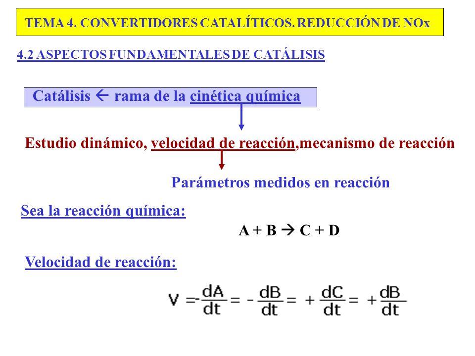 Catálisis  rama de la cinética química