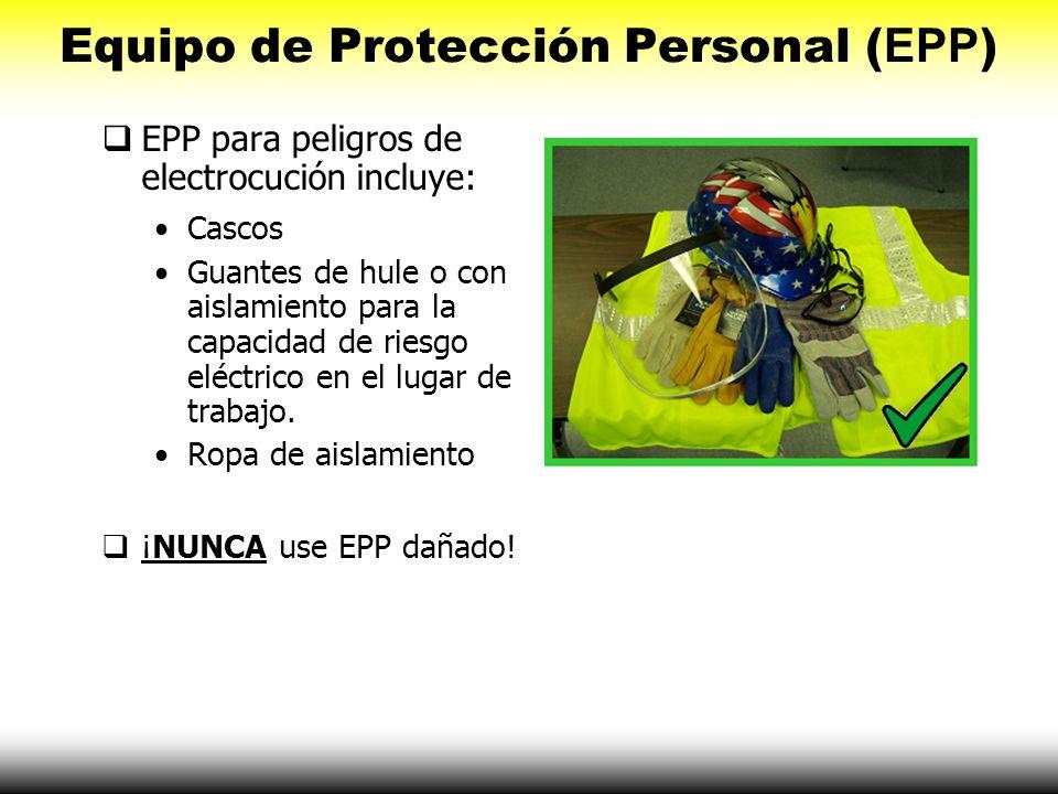 Equipo de Protección Personal (EPP)