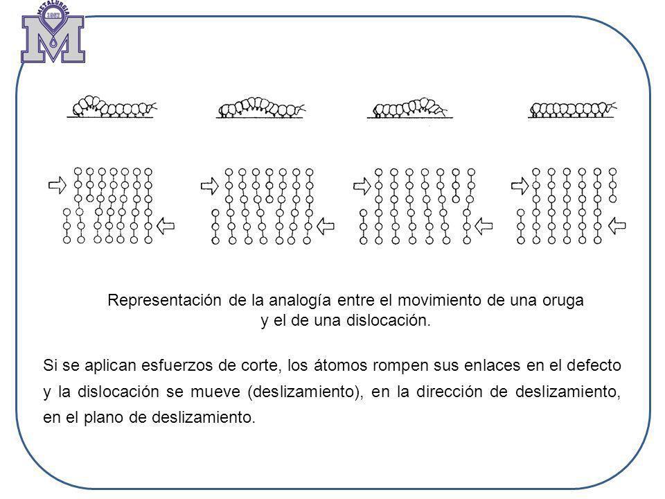 Representación de la analogía entre el movimiento de una oruga