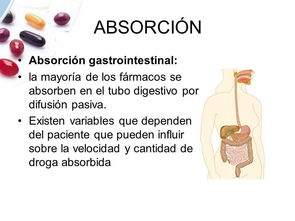 ABSORCIÓN Absorción gastrointestinal: