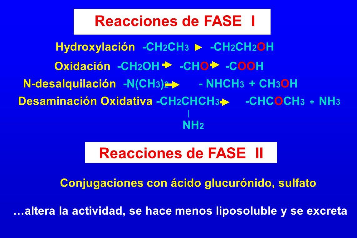 Reacciones de FASE I Reacciones de FASE II