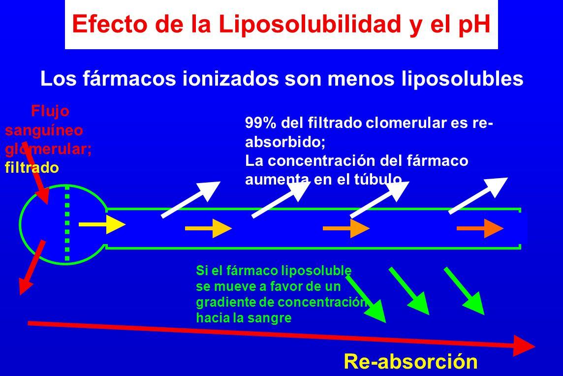 Efecto de la Liposolubilidad y el pH