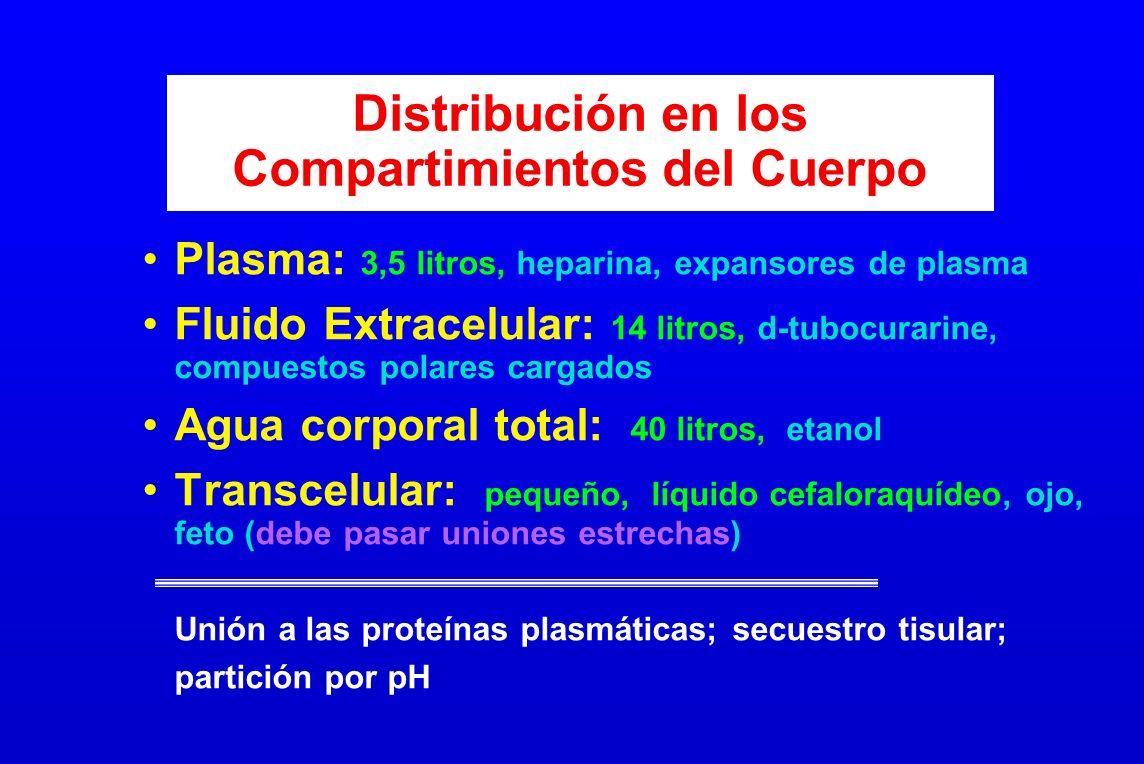 Distribución en los Compartimientos del Cuerpo
