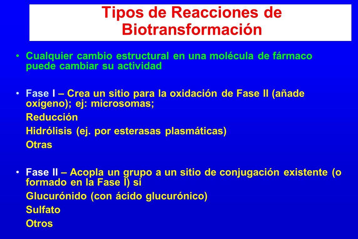 Tipos de Reacciones de Biotransformación