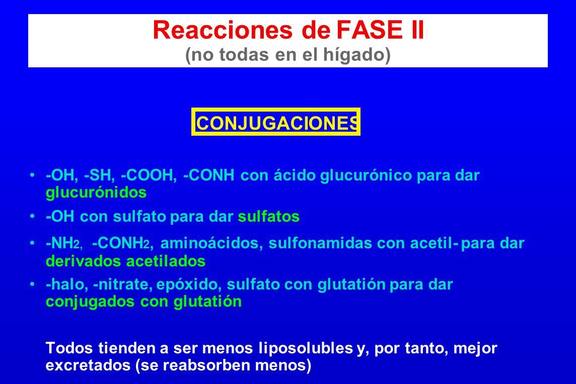 Reacciones de FASE II (no todas en el hígado)