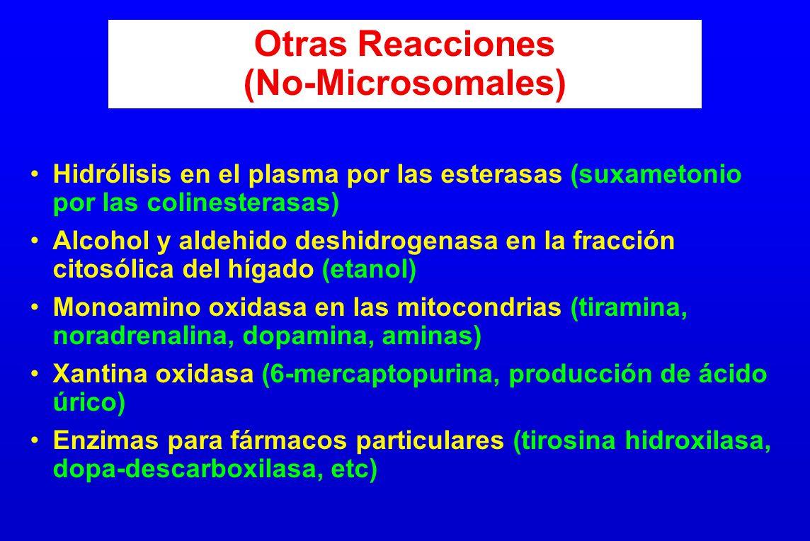 Otras Reacciones (No-Microsomales)