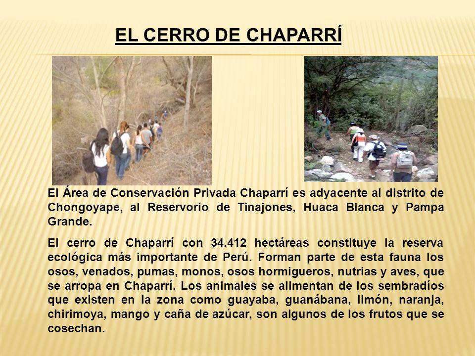 EL CERRO DE CHAPARRÍ