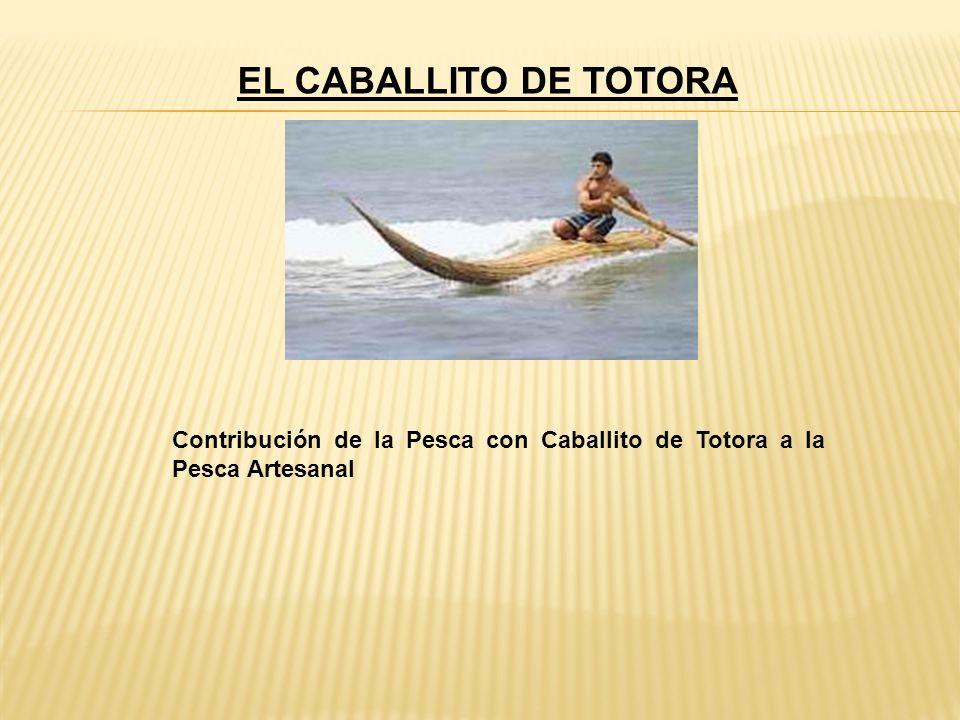 EL CABALLITO DE TOTORA Contribución de la Pesca con Caballito de Totora a la Pesca Artesanal