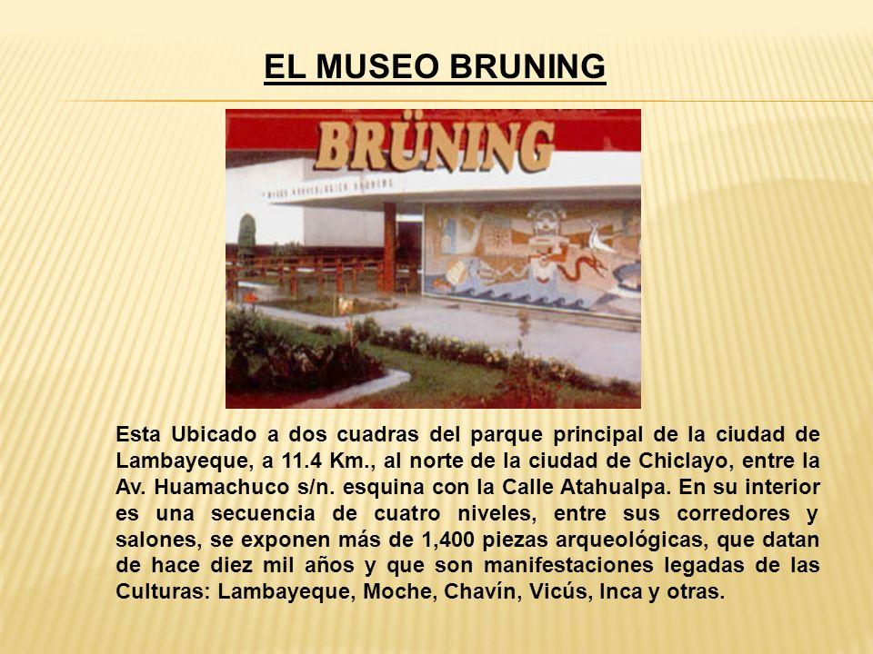 EL MUSEO BRUNING