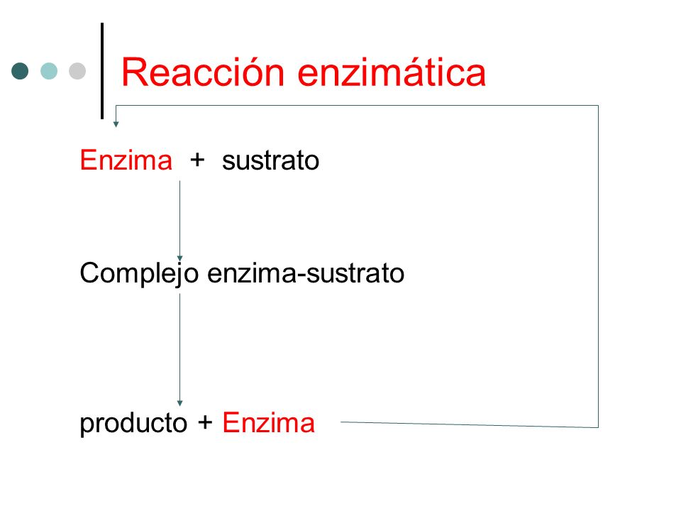 Reacción enzimática Enzima + sustrato Complejo enzima-sustrato