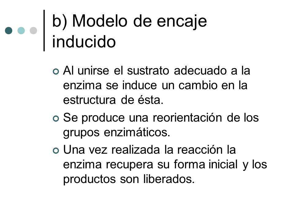 b) Modelo de encaje inducido