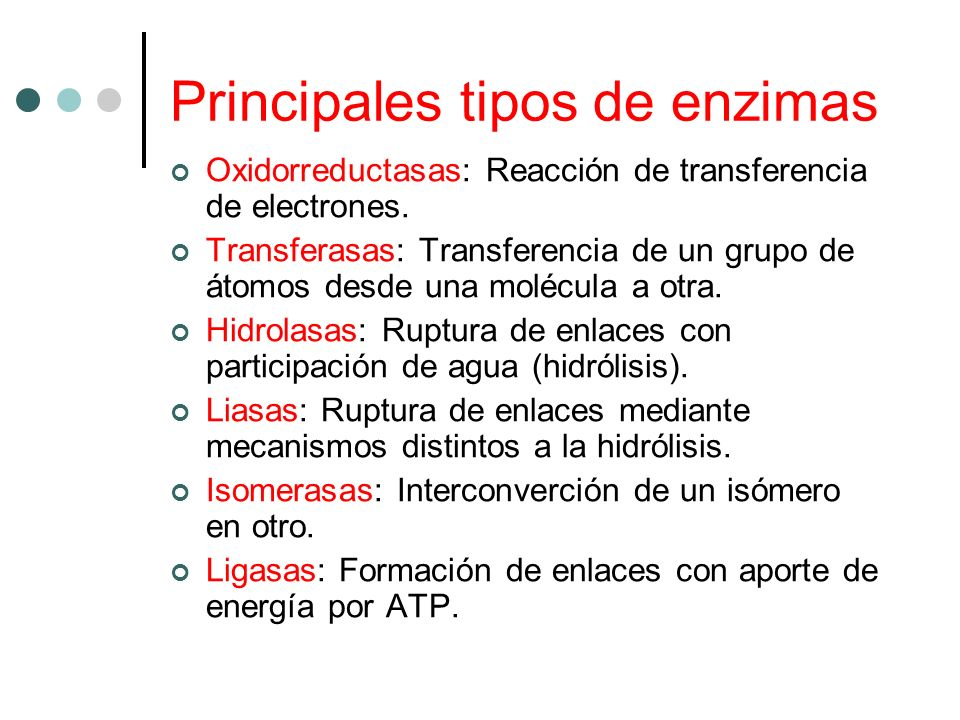 Principales tipos de enzimas