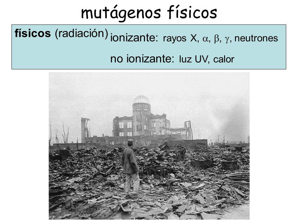 mutágenos físicos físicos (radiación)