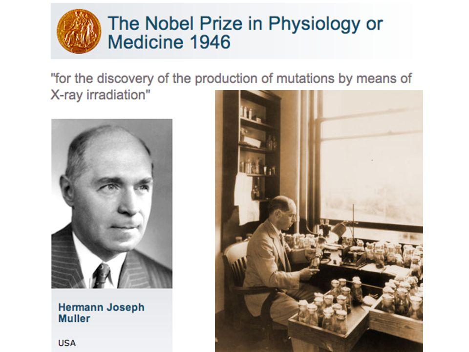 1927 -> transmutación artificial del gen: