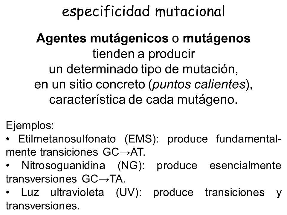 especificidad mutacional
