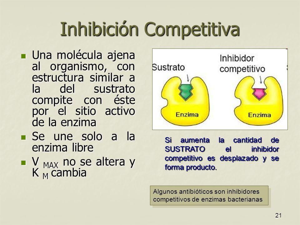 Inhibición Competitiva