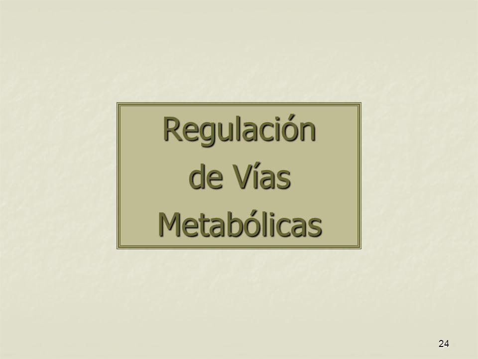 Regulación de Vías Metabólicas